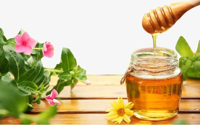 Mật ong rất tốt cho sức khỏe